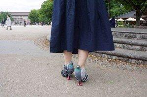 Японка одела туфли-голуби, чтобы не пугать птиц