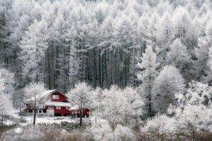 Зимняя сказка на фотографиях самого снежного региона мира