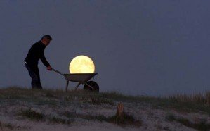 Луна: инструкция по уходу и применению от Лоурента Лавендера