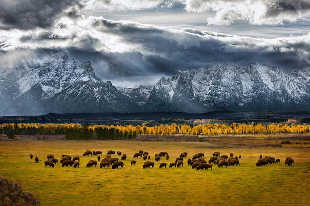 2013-national-geographic-photography-contest-001.sJPG_950_2000_0_75_0_50_50