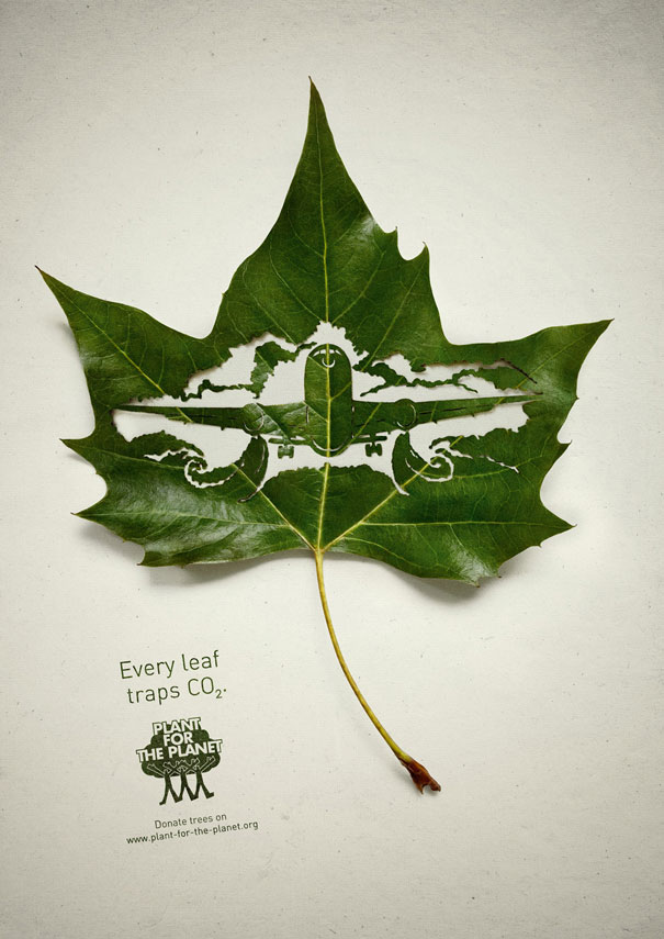 cut-away-leaf-art-lorenzo-duran-2
