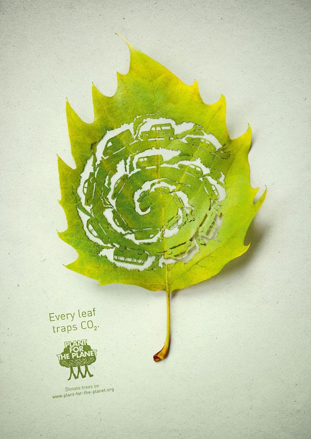 cut-away-leaf-art-lorenzo-duran-1