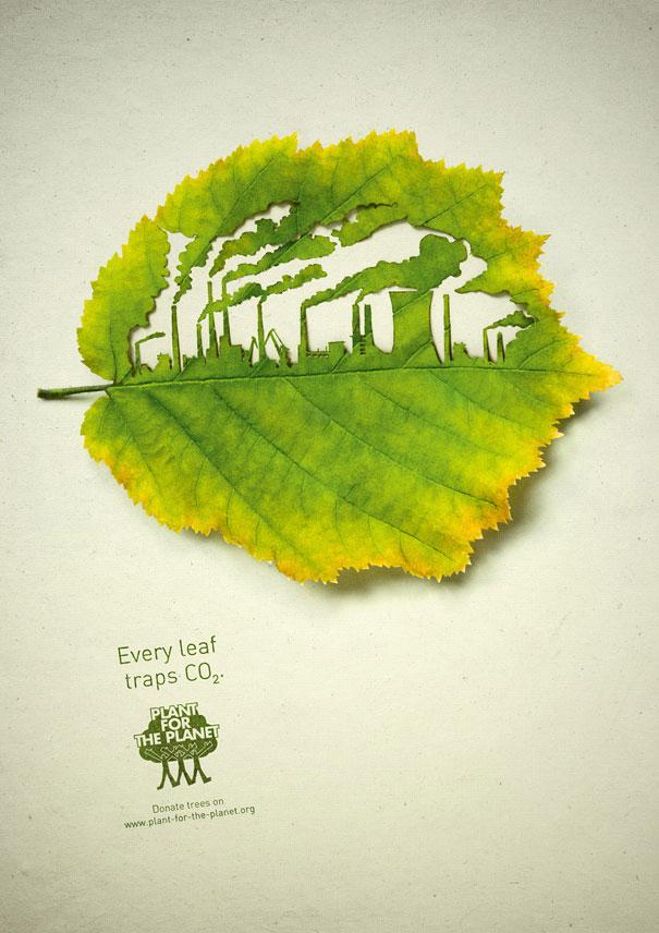 cut-away-leaf-art-lorenzo-duran-3
