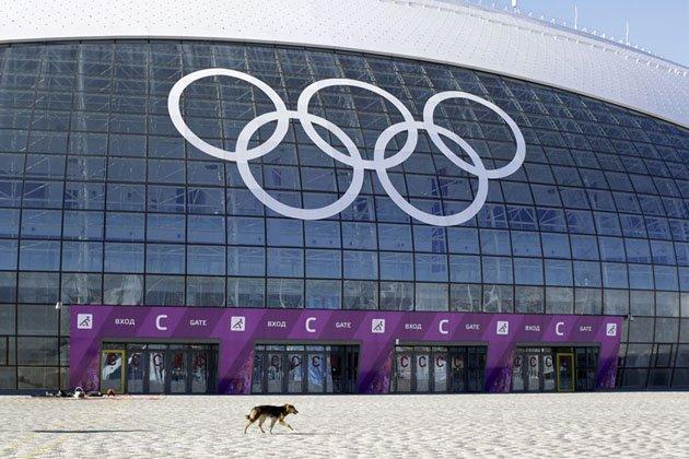 Большой ледовый дворец Сочи