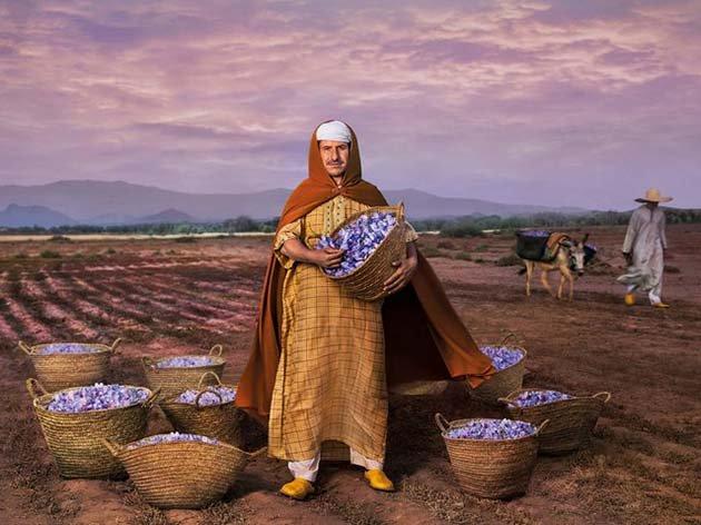 Президент сельскохозяйственного кооператива по производству шафрана в небольшом поселке на юго-востоке Марокко.