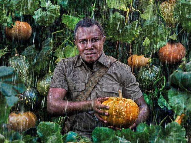 27-летний координатор всех сельскохозяйственных работ в Кении стоит на страже выращивания тыквы