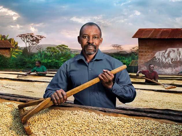 Сушка кофе в Танзании
