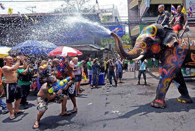 sumashedshie-festivali-mira34