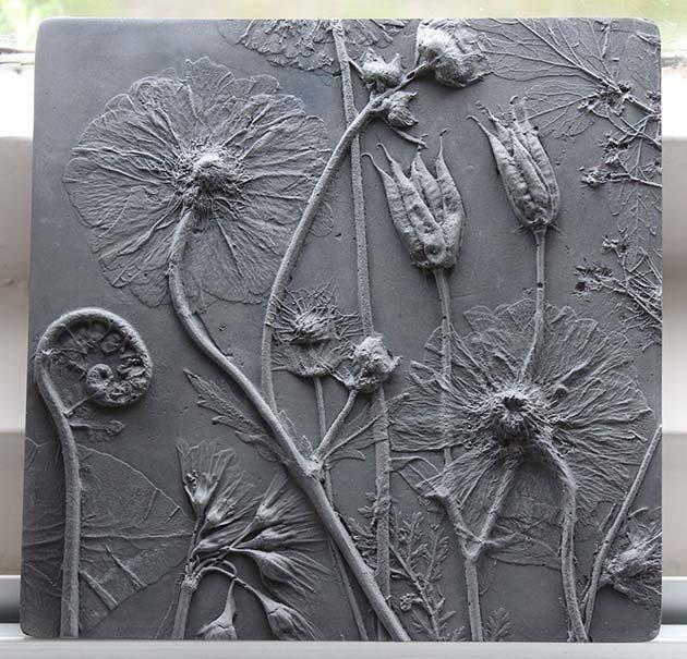 plaster-cast-flower-fossils-rachel-dein-39