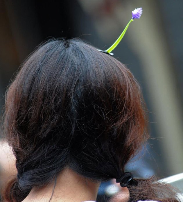 sprout-hairpins-china-trend-11__700