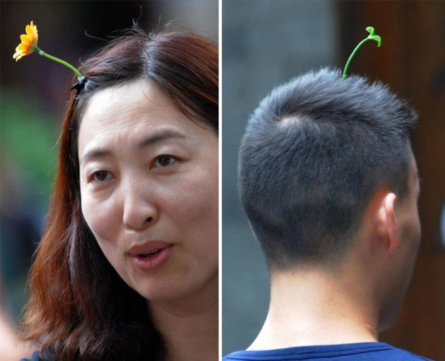 sprout-hairpins-china-trend-12__700