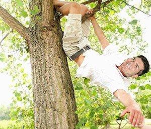 Simon-Cowell-Climbing-Trees-300x257
