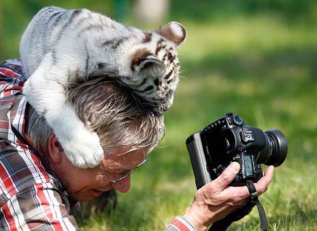 Nature-photographers31__880